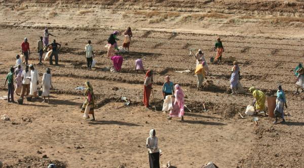 Rafforzare la resilienza delle comunità locali verso i cambiamenti climatici nel Nord Darfur