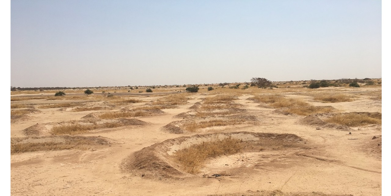 Niger: half-moon basins to stop drought