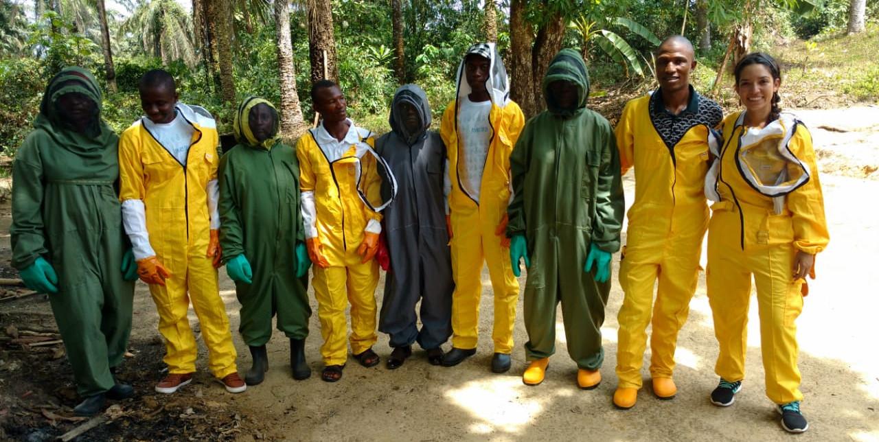 Sierra Leone: i coltivatori di anacardi diventano maestri di apicoltura