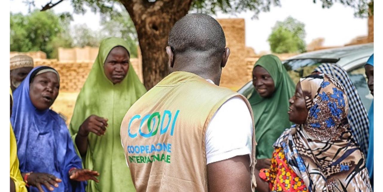 Niger : 120 villages augmentent leur résilience aux effets du changement climatique