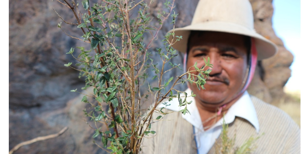 Curanderos, naturistas, parteros. Come si curano gli Uru-Chipaya