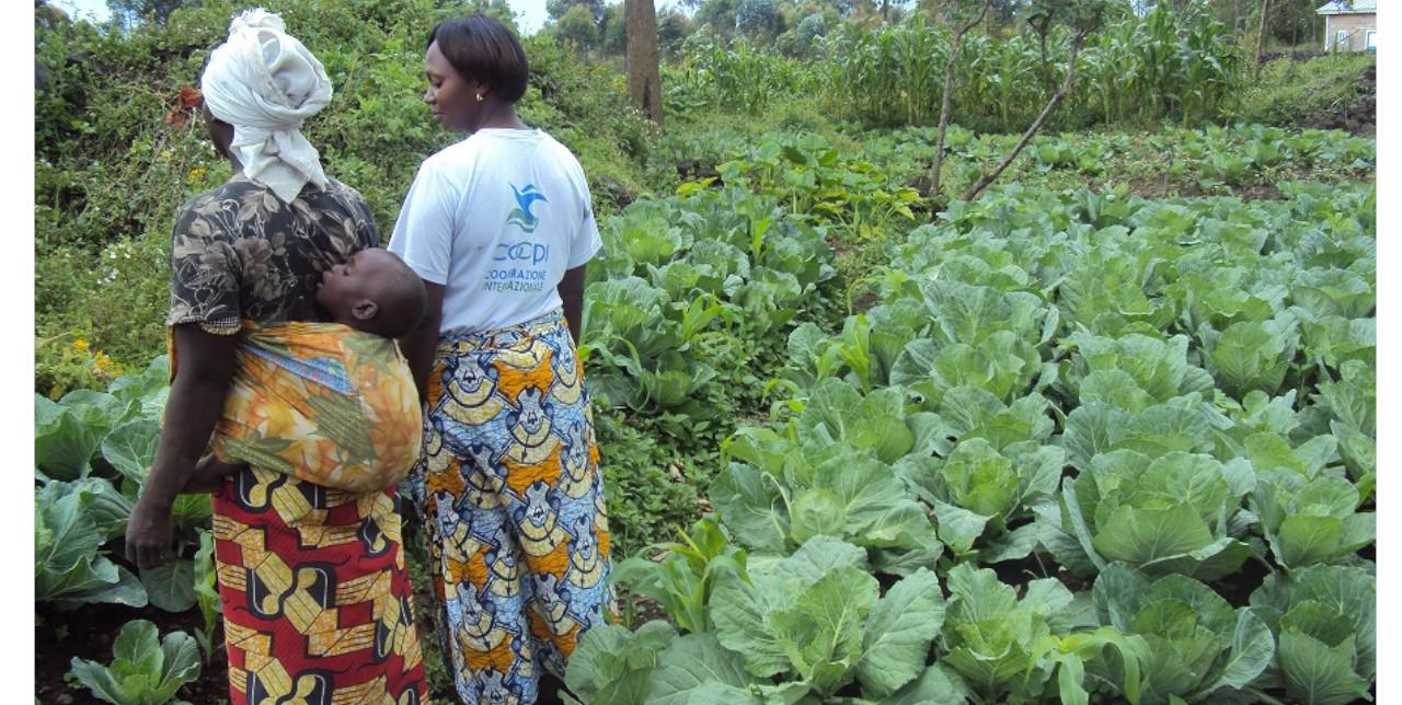 RDC, Kamiji: nutrizione e protezione per 87.000 persone