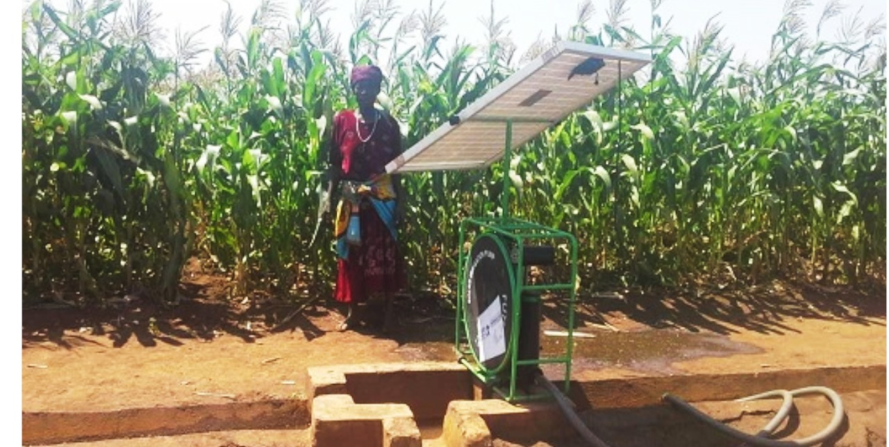 "Malawi, irrigated agriculture. ""We have three harvests a year thanks to COOPI"""