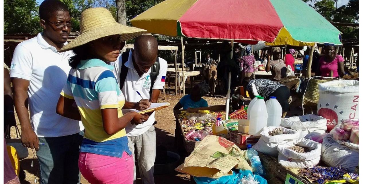 Haiti: Distribuzione di cash e voucher alimentari nelle zone a rischio siccità