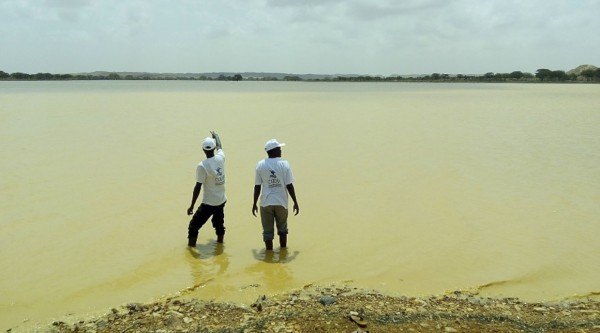 Climate change resilience in the state of Kassala