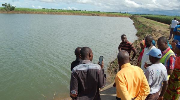 Agricoltura irrigua per rafforzare la sicurezza alimentare a Salima
