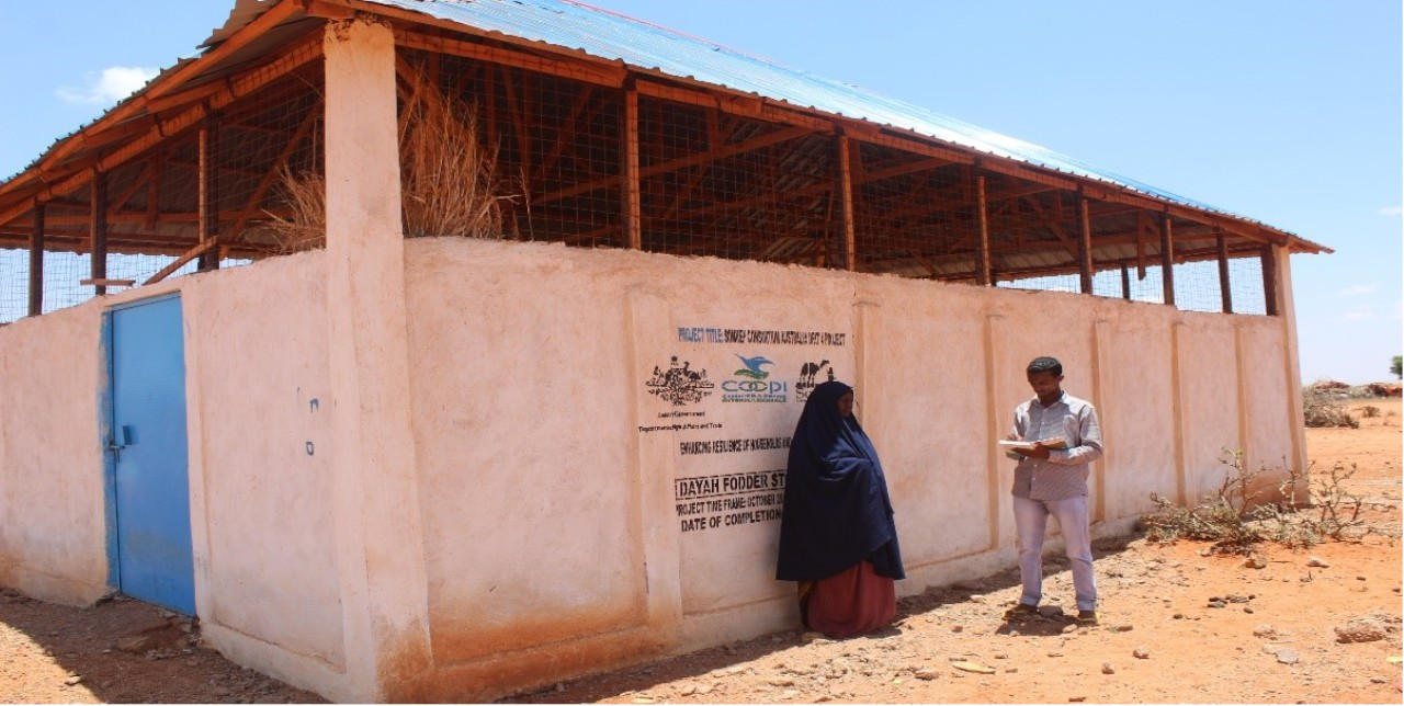 Somalia. Lo stoccaggio del foraggio incentiva la resilienza delle comunità