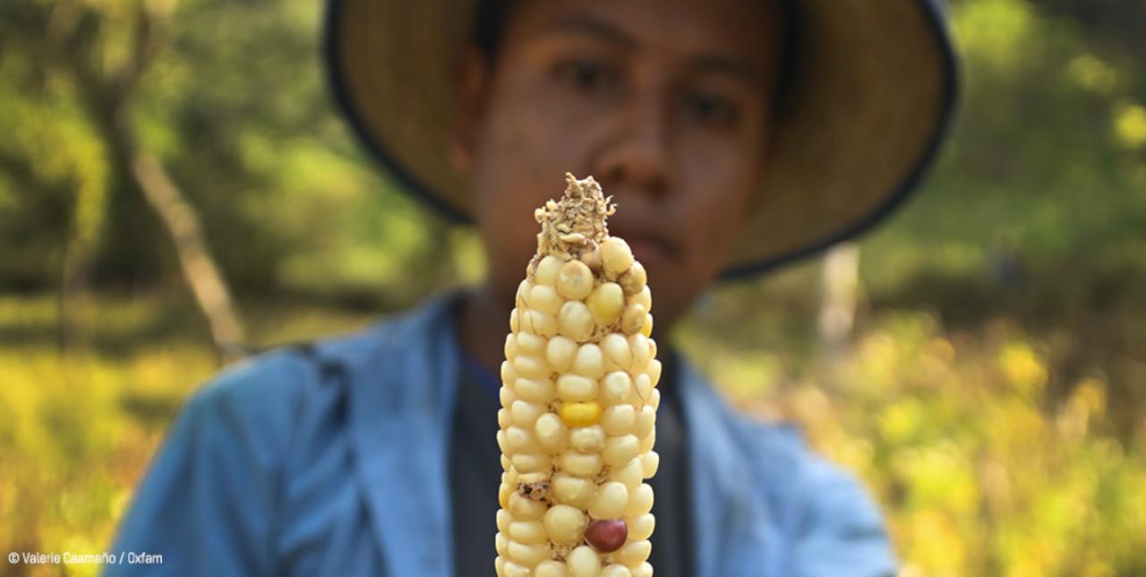 Centroamerica. Siccità e Covid-19 aggravano la crisi alimentare