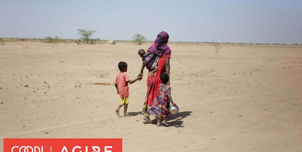 In Africa, contro la desertificazione