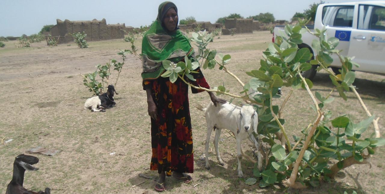 Un nuovo inizio per Khadidja, contro l'insicurezza alimentare