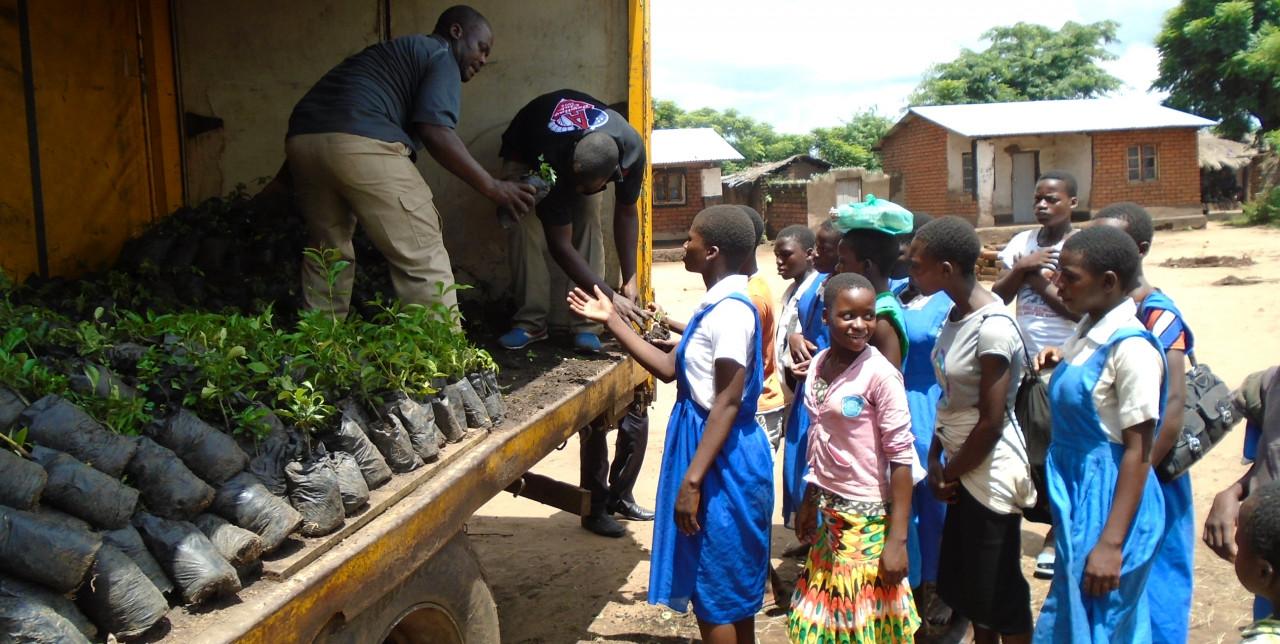 Alberi da frutto nelle scuole