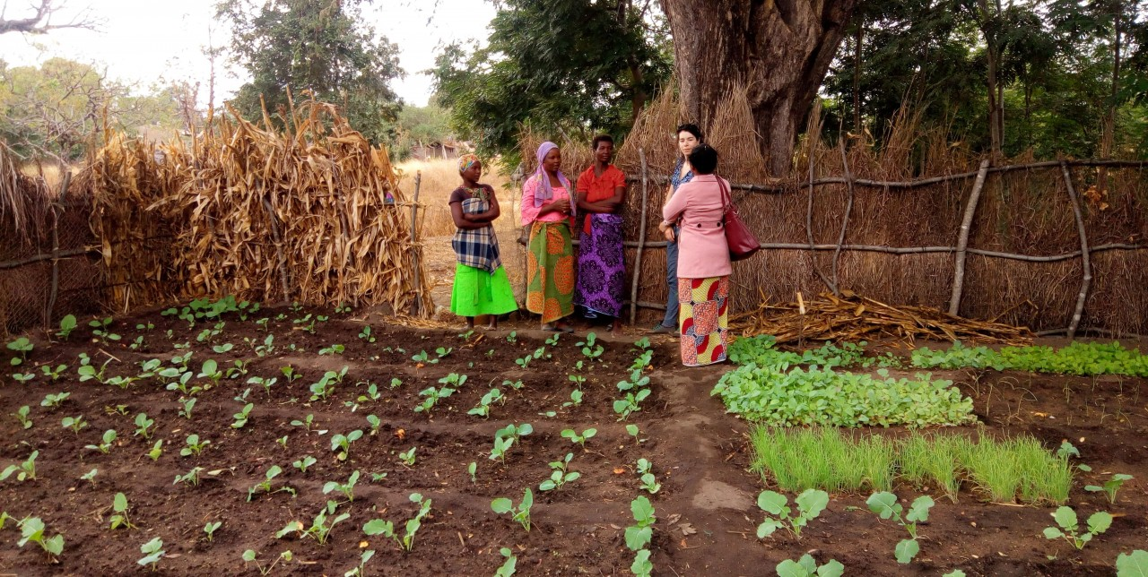 Malawi: visiting the project